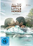 all-the-pretty-little-horses-(film):-stream-verfuegbar?
