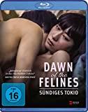 dawn-of-the-felines-–-suendiges-tokio-(film):-stream-verfuegbar?